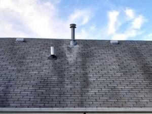 Black Roof Streaks